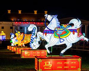 """Šviesos festivalis """"Didieji Kinijos žibintai 2019″"""