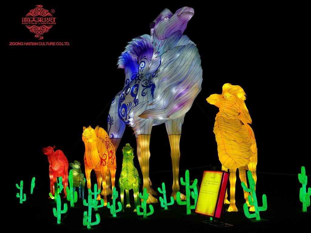 chinese festival of light (6)