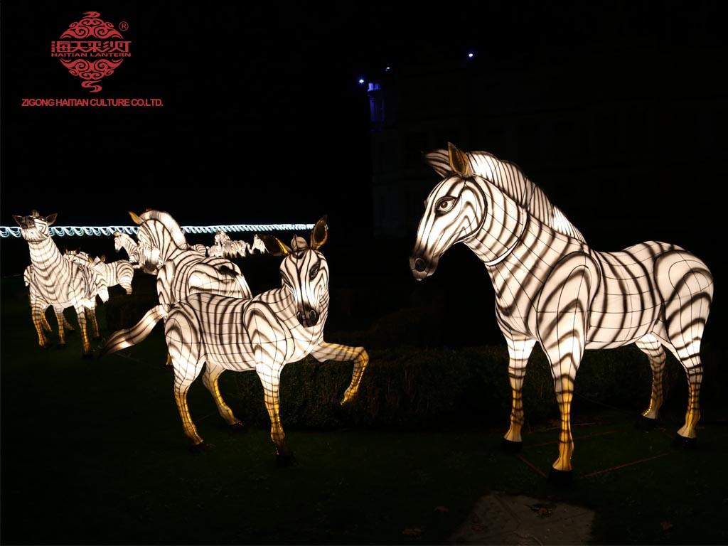 chinese lantern fest (1)
