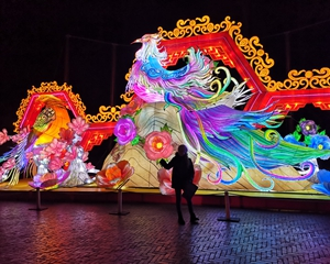 "2nd season ""Chinese lantern festival"" in ouwehands zoo"